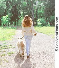 doré, marche, été, chien, propriétaire, retriever, jour, heureux