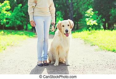 doré, marche, femme, elle, été, chien, laisse, propriétaire, jour, retriever
