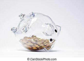 doré, pièces, bas, dessus, porcin, transparent, banque