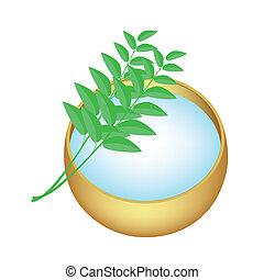 doré, saint, feuilles, bol, eau, vert