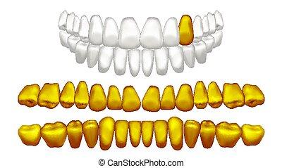 doré, vieux, humain, or, métal, isolé, illustration, dent, réaliste, vector., pirate., teeth.