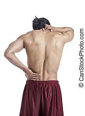 dor, pescoço, costas