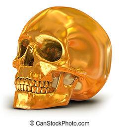 dorado, aislado, cráneo