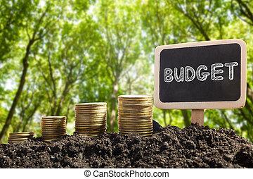 dorado, financiero, tiempo, urbano, dinero, concept., coins, presupuesto, confuso, fondo., pizarra, tierra, palabra, oportunidad