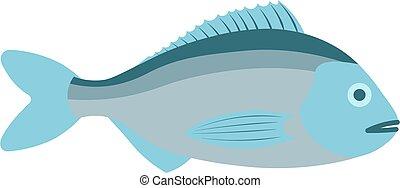 Dorado flat vector illustration. Dorado fish on white background