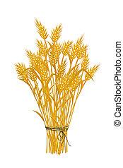 dorado, trigo, icono