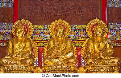 dorato, budda, tempio, statua