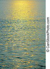 dorato, mare, riflessione, luce sole, mattina