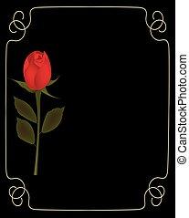 dorato, rosa, cornice, sfondo nero, rosso
