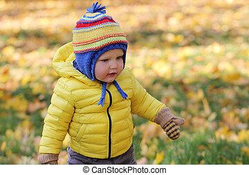 dorlotez garçon, automne, parc