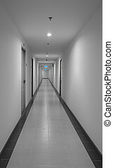 dorm, hallway, flat, of