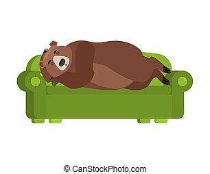 dormant., schläft, gräulich, bed., bär, tier, vektor, schlafend, abbildung, couch., wild