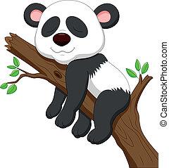 dormir, caricatura, panda