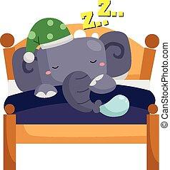 dormir, elefante