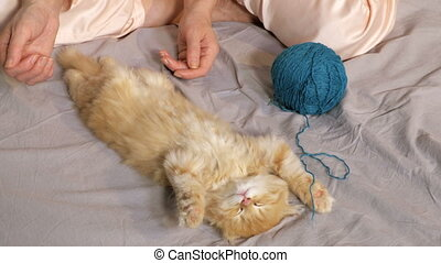 dormir, femme, chaton