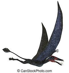 Dorygnathus Pterosaur over White