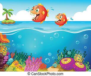 dos, asustadizo, pirañas, en, el, mar