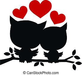 dos, búhos, enamorado