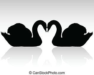 dos, cisnes, negro, vector, siluetas