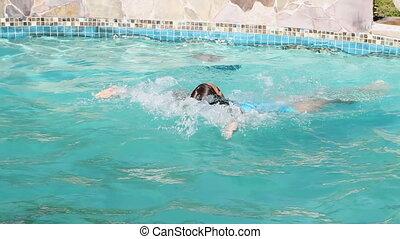 dos crawlé, exercice, natation