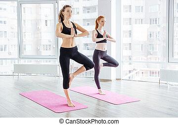 dos, hermoso, mujeres jóvenes, practicar, yoga
