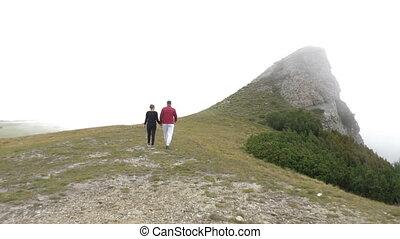 dos, montagne, couple, jeune, promenade, leur, tenant mains, apprécier, voyage, vue