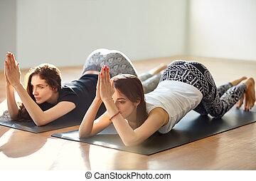 dos, mujeres jóvenes, hacer, yoga, asana, ocho, limbed,...