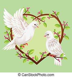 dos, palomas, en, un, forma corazón, árbol.