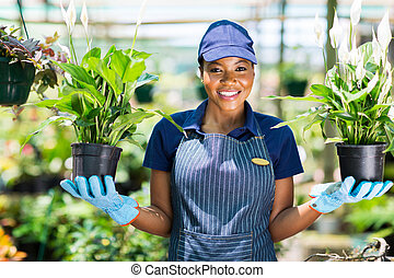 dos, tenencia, africano, florista, flores potted