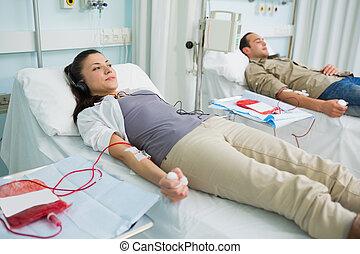 dos, transfused, pacientes, acostado, en, un, cama