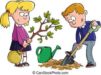 dosadzenie drzewo