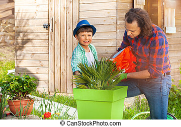 dosadzenie, kontener, ogród, ojciec, do góry, syn, nauczanie