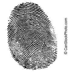 doskonały, kciuk, odcisk palca
