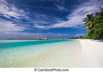 doskonały, tropikalny, malediwy, wyspa, woda, wille