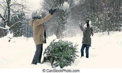 dostając, dziewczyna, małe drzewo, boże narodzenie, forest., dziadek