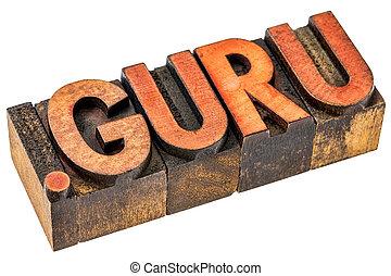 dot guru internet domain