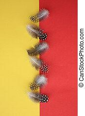 dotted, gevogelte, guinea, zes, veertjes, gele, rood