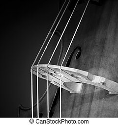 Double bass - Close-up of double bass, wooden musical...
