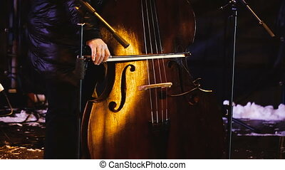 Double bass. Musical instrument double bass