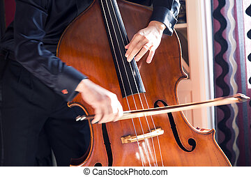 Double bass - Musician playing the double bass with a bow