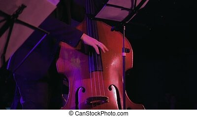 Double bass player on the stage slow motion