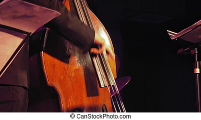 Double bass player on the stage - Contrabass player plays...