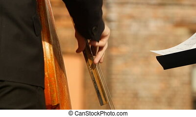 Hands playing contrabass strings close up