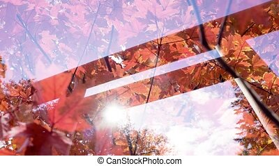 Double exposure japan autumn background