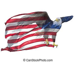 Double exposure of bald eagle on american flag.