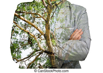 Double Exposure of Businessman with Green Tree Branch Trunk