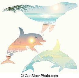 Double exposure, whale, dolphin, wildlife concept - Double...