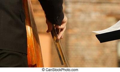 double, instruments à cordes, basse