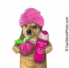 douche, 3, après, chien, turban