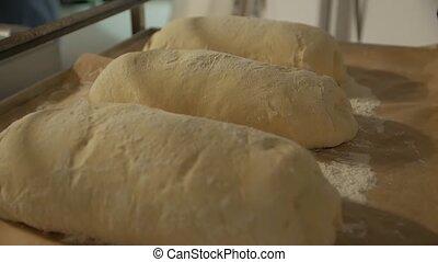 Dough Raw Bread - Dough raw bread blanks with flour camera ...